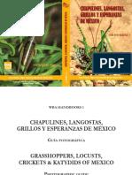 CHAPULINES, LANGOSTAS, GRILLOS Y ESPERANZAS DE MÉXICO GRASSHOPPERS, LOCUSTS, CRICKETS & KATYDIDS OF MEXICO GUÍA FOTOGRÁFICA PHOTOGRAPHIC GUIDE.pdf