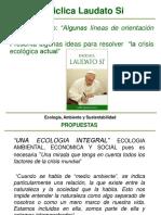 Laudati Si Capitulo 5 y 6.pdf