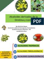 Clase_de_Alcaloides_derivados_de_la_orni.pptx