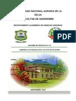P-4 INICIO DE LAS LABORES CULTURALES PLATEO,DESCHIPE ,DESBADAJO..docx