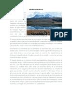 NEVADO-COROPUNA.docx