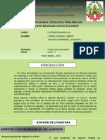 SITUACIÓN SOCIOECONOMICA, TECNOLOGICA, PROBLEMAS QUE AFRONTA Y PLAN DE MEJORA DEL CULTIVO DE ALGODÓN.pptx