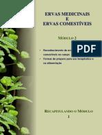 Ervas Medicinais e Ervas Comestíveis (modulo 2).ppt