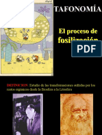 Paleobotanica2.ppt