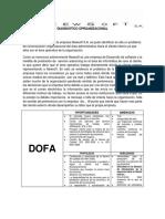 Diagnostico Organizacional Newsoft