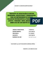 PROPUESTAS DE CAPACITACION ERI NEC SAN MARTIN DE ALAO.docx