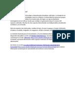 National Geographic-Alimentos y Comida Mexicana_vf.docx