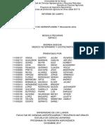INFORME FINA FORRAJES.docx