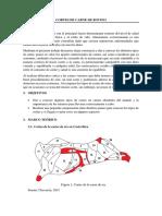 CORTES DE CARNE DE BOVINO.docx