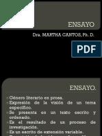 ENSAYO.pptx