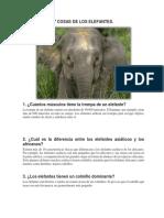 7 COSAS DE LOS ELEFANTES.docx