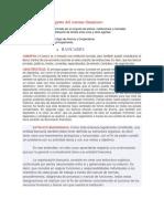 Agente-del-sistema-financiero-2.docx