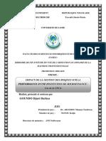 memoire-goundo-djare-darkoa (1).pdf