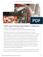 10000 Layer FarmingProject Report for Beginners