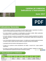 002 - Cifras Sectoriales - 2017 Junio Forestal (1)