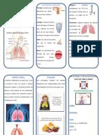 Sistema Respiratorio Triptico