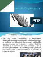 Delincuencia Organizada012