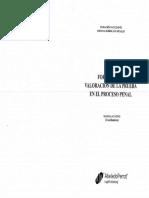 Mauricio Duce - Formación y Valoración de La Prueba en El Proceso Penal