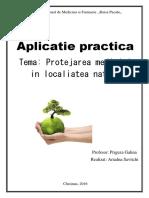 Lucrare_practica.docx