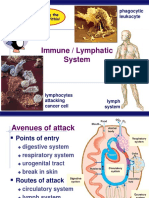 imunologi dasar2
