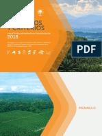 RSPO PyC.pdf