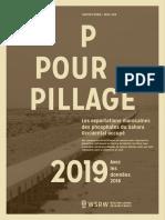 P for Pillage 2019 - avec les données de 2018