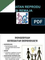 286475286 Kesehatan Reproduksi Remaja Ppt [Autosaved]