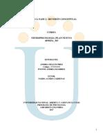 Trabajo Individual Unidad 2 Fase 2 Revisión Conceptual