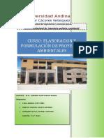 PRESENTACION_DE_TRABAJO_FINAL_DE_PROYECTOS_AMBIENTALES[1].docx