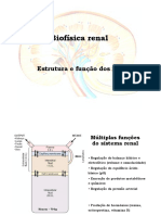 Biofísica renal. Estrutura e função dos rins.pdf