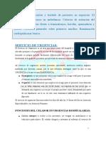 CSICELADOROTEMA14bis