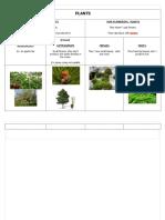 PLANTS2.docx