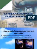 La percepción enfocada en el Neuromarketing.pptx