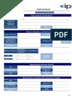 Formato de Perfil IPS.xlsx