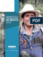 Diagnóstico_productividad_2018.pdf
