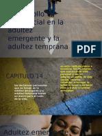 Desarrollo Psicosocial en La Adultez Emergente y La Adutez Temprana