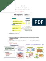6. Sem. Semana VI Cuestionario - copia.docx