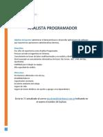 631_Analista-Programador-2.pdf