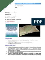 Parametros Morfologicos-recursos Hidricos