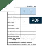 Matriz RASIC_ Roles, Responsabilidades y Autoridades de La Organización