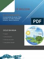 Trabalho de Biologia Ciclos Biogequimicos FINAL