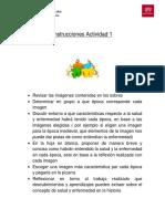 Instrucciones Actividad 1