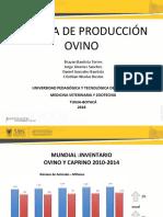 PRODUCCION_OVINOS