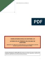 04 Norma Internacional de Auditoría 210