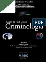 LIBRO ELECTRONICO DE CRIMINOLOGIA (1)44.pptx