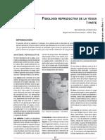 REFERENCIAS-36-15-21.pdf
