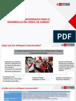 enfoques_transversales