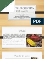 Cadena Productiva Del Cacao Expo