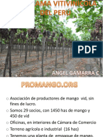17h00 - Parorama Vivicinícola do Perú  - Angel Gamara - Perú.pdf