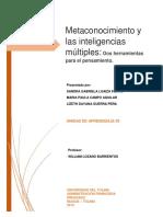 METACONOCIMIENTO.docx